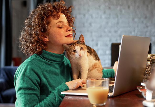 Vrouw werkt achter laptop en de kat loopt over het toetsenbord