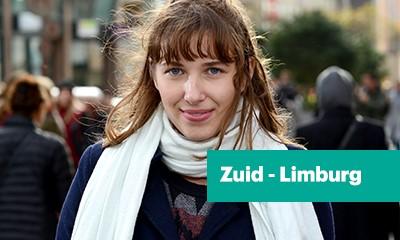 VGZ Zuid-Limburgpakket